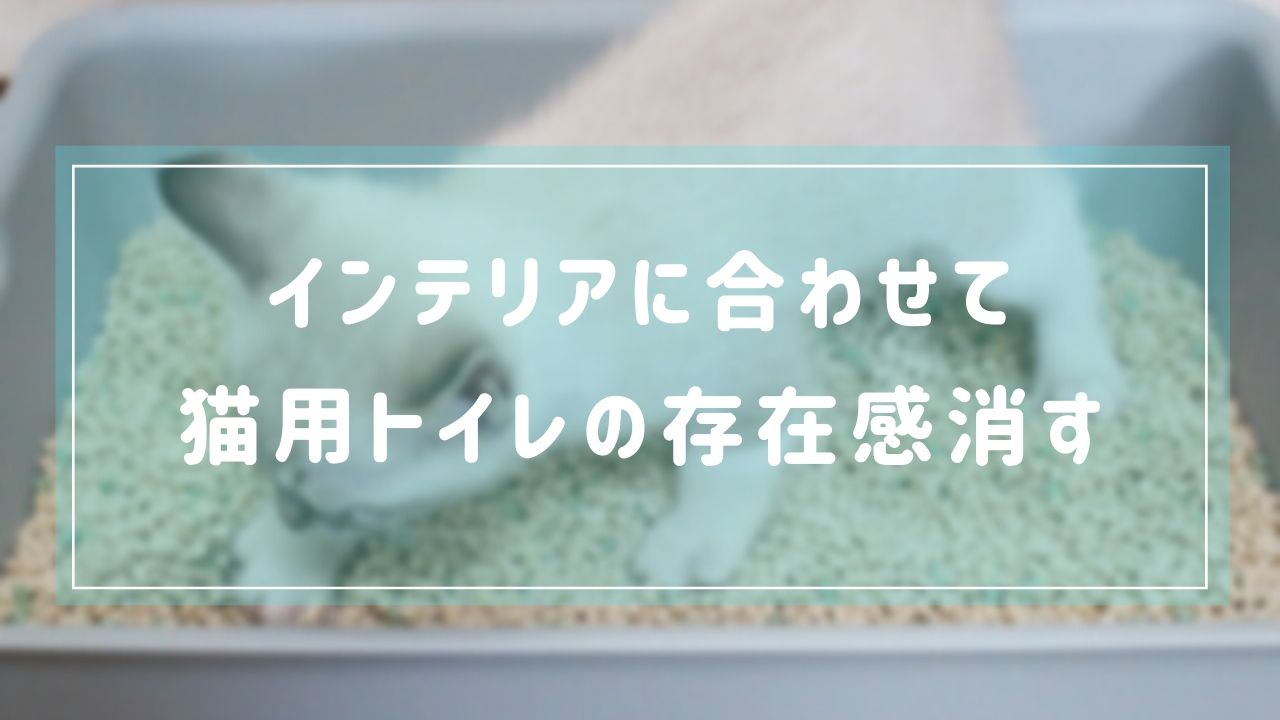 【猫との暮らし】インテリアを邪魔しない猫用のトイレと目隠しアイテムを紹介